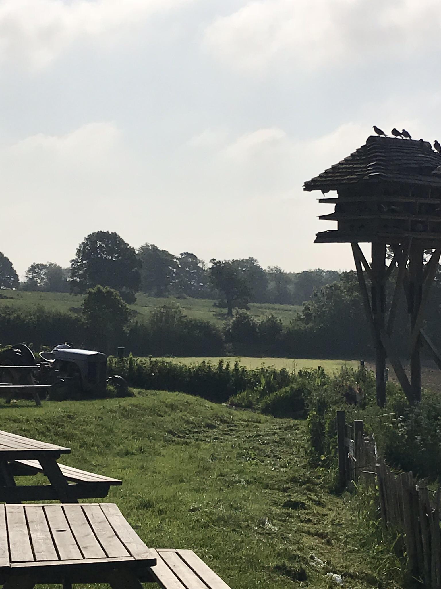Image of Tablehurst Farm