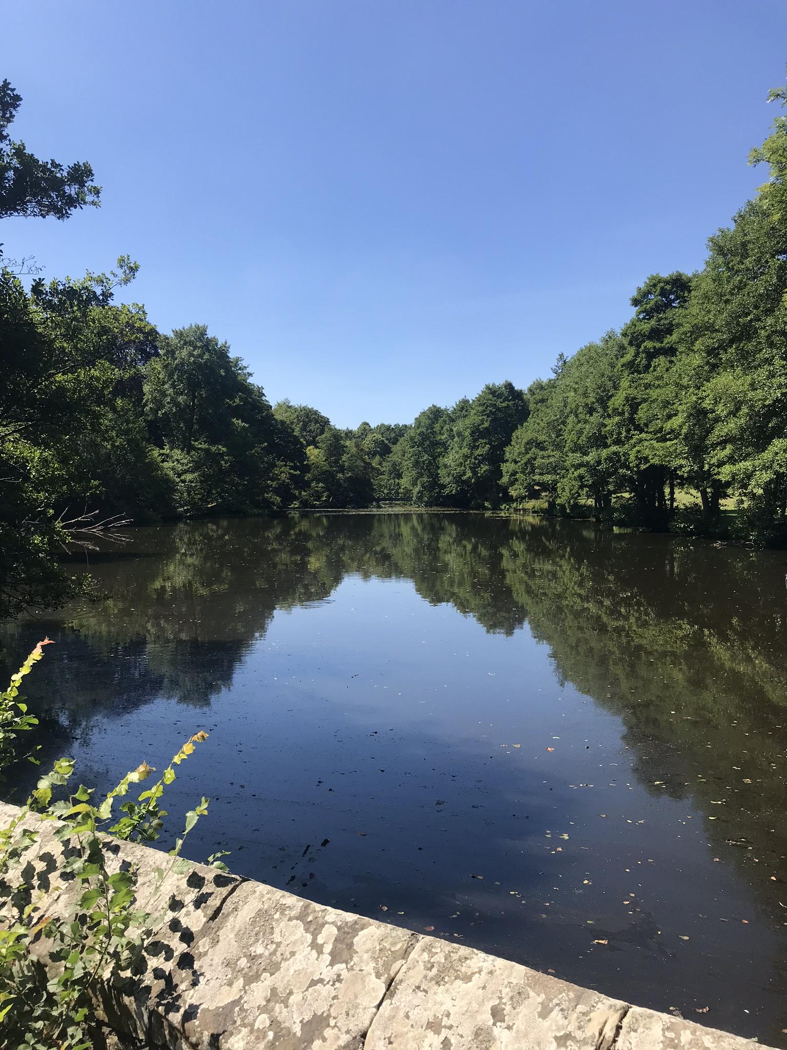 Image of lake at Chiddingstone Castle