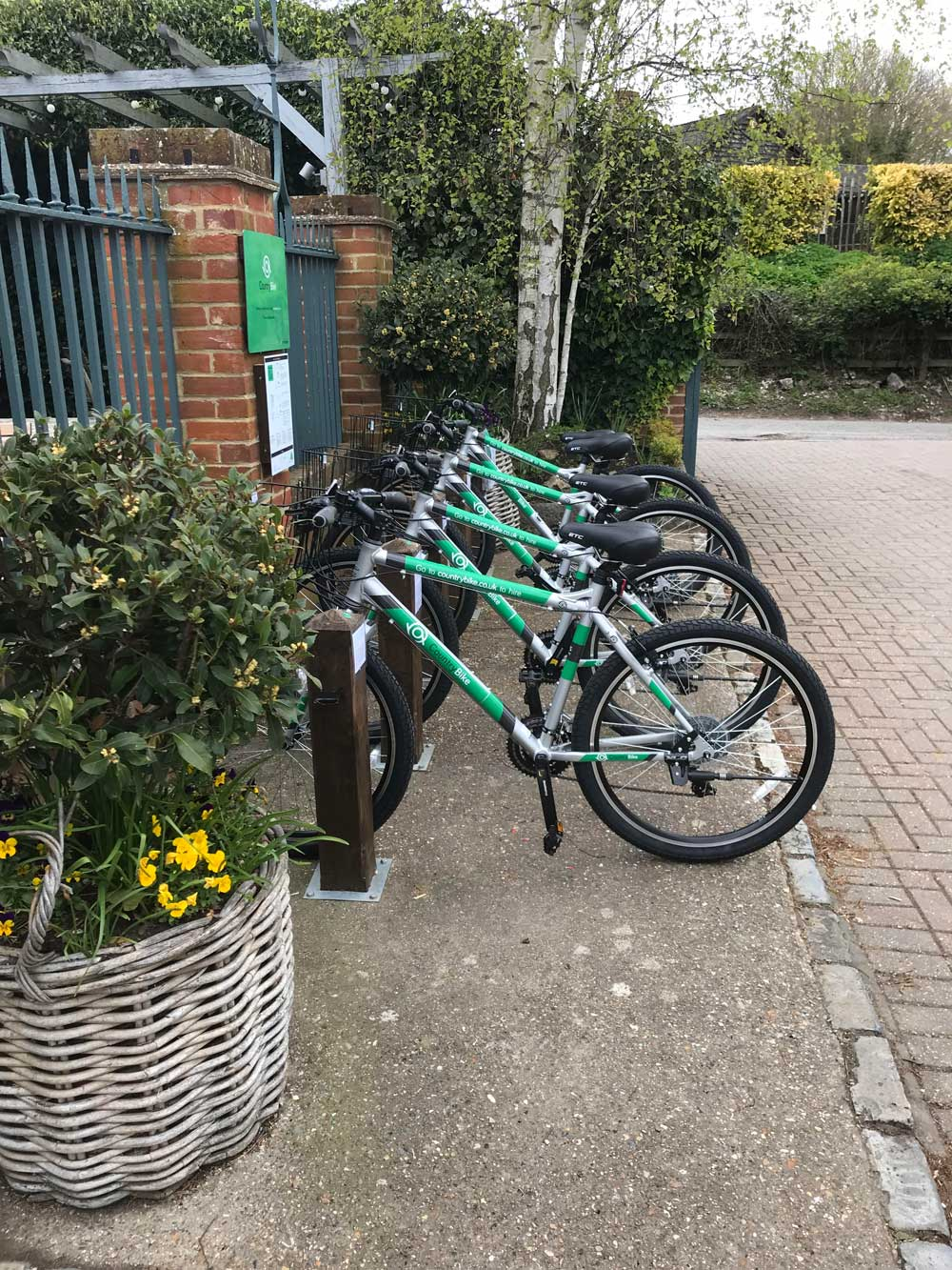 Image of bikes at The Dirty Habit