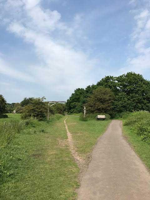 Cuckoo Trail image